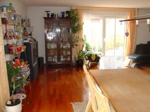 Wohn-und-Esszimmer